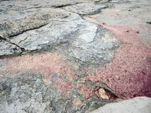 Puntello roccioso del Mar Caspio fotografia stock libera da diritti