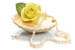 Punten voor decoratieve schoonheidsmiddelen, make-up, spiegel en bloemen Royalty-vrije Stock Foto