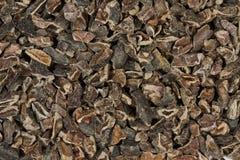 Punti crudi del cacao Fotografia Stock Libera da Diritti