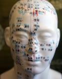 Punti del Facial di agopuntura Fotografie Stock Libere da Diritti