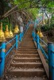 Punti del tempio della tigre Fotografia Stock Libera da Diritti