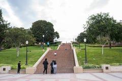 Punti di Janss al UCLA Fotografia Stock