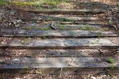 Punti di legno immagine stock libera da diritti