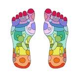 Punti di massaggio del piede di reflessologia Fotografia Stock