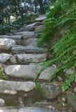 Punti di pietra Immagine Stock