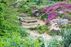 Punti di pietra e bei fiori immagini stock