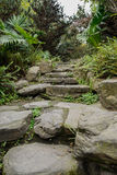 Punti di pietra in molla verdeggiante Fotografia Stock