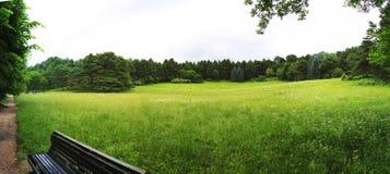 Punti di riferimento del parco in Kislovodsk Immagine Stock Libera da Diritti