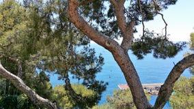 Punti di vista di principe Palace del Monaco fotografia stock libera da diritti