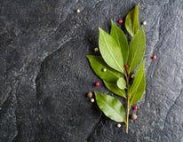 Puntilla de la hoja y de la pimienta frescas de laurel en fondo de piedra negro Fotos de archivo libres de regalías