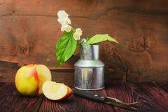 Puntilla del jazmín y manzana cortada Imagen de archivo