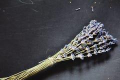 Puntillas de la flor de la hierba de la lavanda atadas en un manojo Foto de archivo