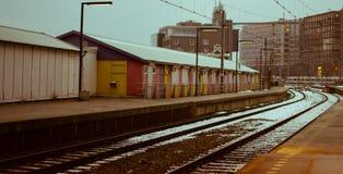 Puntina ghiacciata del treno Fotografia Stock