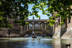 Punting Beneath the Bridge of Sighs, St Johns College, Cambridge. Royalty Free Stock Photography
