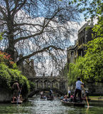 Punting in Cambridge. Punts on the river Cam in a sunny spring day Royalty Free Stock Images