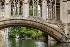 PUNTING I CAMBRIDGE Arkivfoton