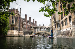 PUNTING I CAMBRIDGE Royaltyfri Foto