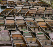 Punting in Oxford Royalty Free Stock Photography