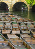 Punting in Oxford Royalty Free Stock Image