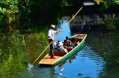 Punting på den Avon floden Christchurch - Nya Zeeland Royaltyfri Foto