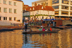 Punting on River Cam at Cambridge Royalty Free Stock Photography