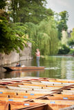 Punting on the River Cam, Cambridge, UK Royalty Free Stock Photo