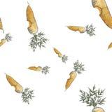Puntinismo senza cuciture pungente del modello della carota Fotografie Stock
