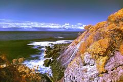 Punto australiano di Hallidays della linea costiera nell'infrarosso immagini stock libere da diritti