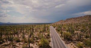 Punto bajo del vuelo del abejón sobre el camino del desierto, coche inmóvil en el medio del campo del cactus que sorprende en el  metrajes
