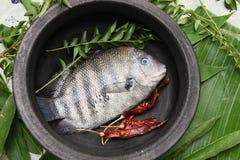Punto crudo fresco de la perla o pescados verdes del chromide de Kerala la India Foto de archivo libre de regalías