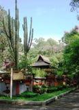 Punto de estacionamiento del jardín de Songority Imagenes de archivo