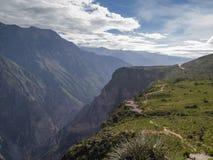 Punto de opinión del barranco de Colca, Perú. foto de archivo