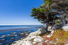 Punto de Pescadero en la impulsión de 17 millas en Big Sur California Fotografía de archivo