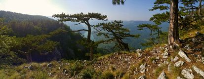Punto de vista de la montaña Fotografía de archivo libre de regalías