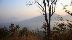 Punto de vista de la montaña del tok del phu en tiempo de mañana con la niebla y la salida del sol almacen de video