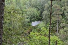 Punto de vista del metal en árboles Fotos de archivo