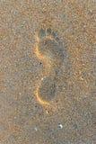 Punto del piede sulla sabbia della spiaggia fotografia stock libera da diritti