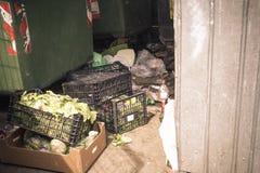Punto dell'immondizia con le verdure Immagini Stock