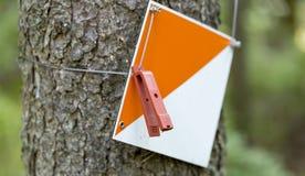 Punto di controllo di orienteering fotografia stock