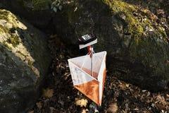 Punto di controllo di navigazione del vincitore della bandiera di funzionamento di Forest Orienteering Competition Cross-Country  Fotografie Stock