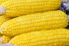 Punto di ebollizione del cereale del primo piano Immagini Stock