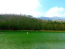 Punto di Munnar Eco fotografie stock libere da diritti