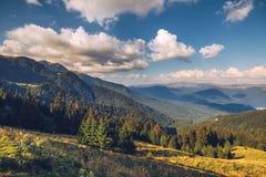Punto di riferimento alpino della Transilvania di estate, paesaggio con i campi verdi Immagine Stock Libera da Diritti