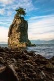 Punto di riferimento della roccia di Siwash Fotografia Stock