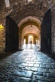 Punto di riferimento famoso del castello di Wawel a Cracovia fotografia stock