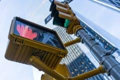 punto di riferimento, più, metropolitan, americano, urbano, fondo, architettura, panoramica, orizzonte, vista, viaggio, icona, af immagine stock