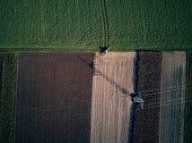 Punto di vista aereo dell'occhio di uccello di volo del fuco dell'erba di falciatura del trattore sul bello agricoltore verde del Immagine Stock Libera da Diritti