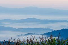 Punto di vista all'Sa-ONG di Doi, Chiang Sean, Chiang Rai Province Fotografia Stock Libera da Diritti
