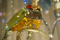 Punto di vista alto vicino dell'uccello di cristallo fotografie stock libere da diritti
