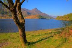 Punto di vista britannico di Leven Lochaber Scotland del lago alle montagne Immagini Stock
